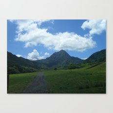Hawaii 2 Canvas Print