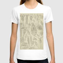 Microscopic Biology T-shirt