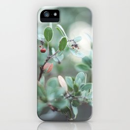 Red Berries on a Tree in Yosemite National Park iPhone Case