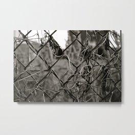 Fenced Metal Print