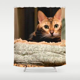 Did You Knock? Shower Curtain