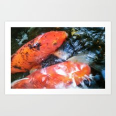Koi Abstraction 001 Art Print