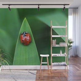 Ladybug on Leaf Wall Mural