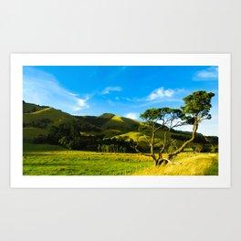 Wairarapa Art Print
