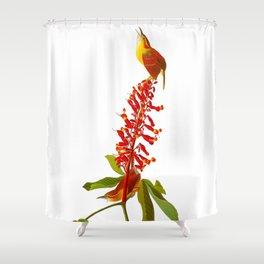 Great Carolina Wren Shower Curtain