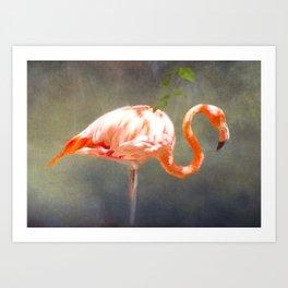 Pink Flamingo 1 Art Print