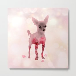 Chihuahua and roses Double Exposure Metal Print