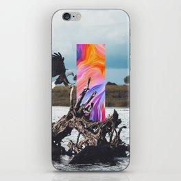 H/26 iPhone Skin