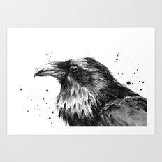 Raven Watercolor Bird Animal Art Print