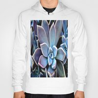 succulent Hoodies featuring succulent plant by  Agostino Lo Coco