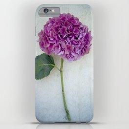 One Hydrangea II iPhone Case