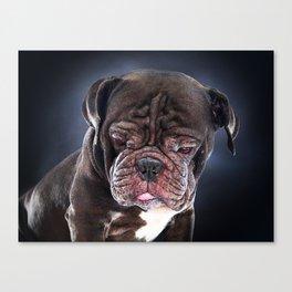 Super Pets Series 1 - Sad Liam Canvas Print