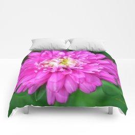 Zinnia Flower Comforters