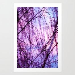 Pink Lavender Sky Through Wispy Trees Art Print