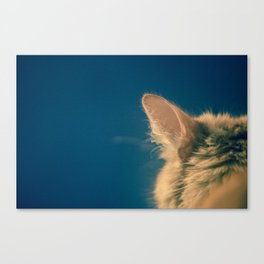 say what Canvas Print