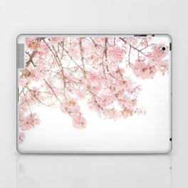 Pink Blooming Cherry Trees Laptop & iPad Skin