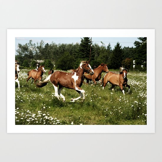 Spring Horse Run Art Print