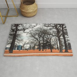Park view at Belle isle in Detroit Rug