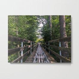 Mountain Coaster (1) Metal Print