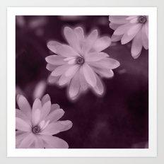 Magnolia dance (purple) Art Print