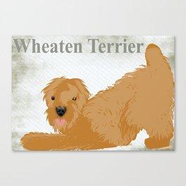 Wheaten Terrier Dog Canvas Print
