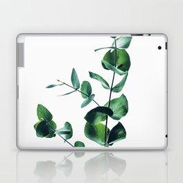 Eucalyptus branch Laptop & iPad Skin