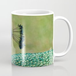 Peacock Mating Call Coffee Mug