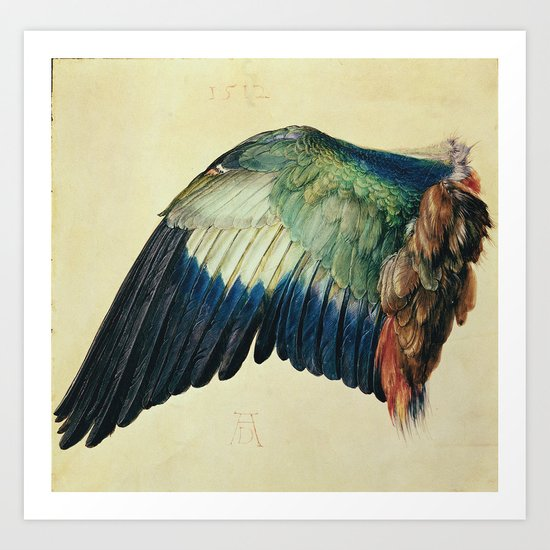 Albrecht Durer - Wing Of A Blue Roller by favoritepaintingsart