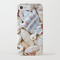 shells iPhone & iPod Cases featuring Shells by Taylor Payne
