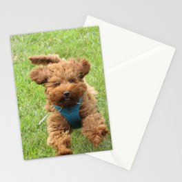 Luna the Labradoodle Stationery Cards