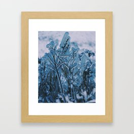 Frozen Grass at Niagara Falls Framed Art Print