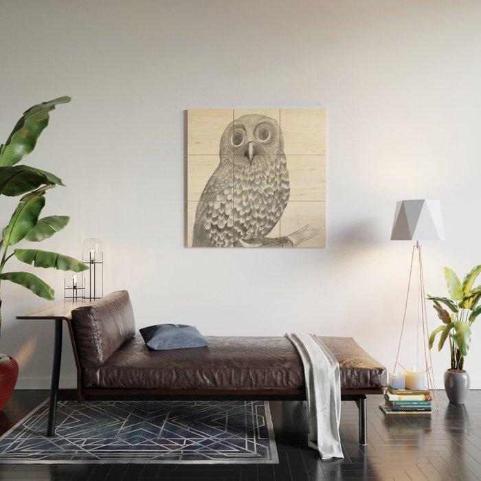 Little Morepork Owl Wood Wall Art