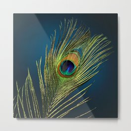exotic feather  Metal Print