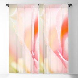 Only One - Rose #decor #society6 #buyart Blackout Curtain