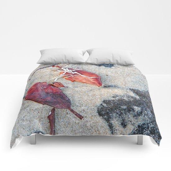 Coralline algae and dead leaf on sand Comforters