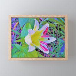Beautiful White Trumpet Lily with Yellow Center Framed Mini Art Print