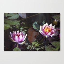 Longwood Gardens - Spring Series 26 Canvas Print