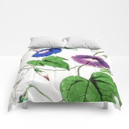 A Purging Pharbitis Vine in full blue and purple bloom - Vintage illsutration Comforters