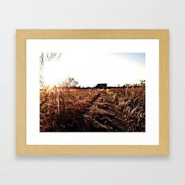 field of dying dreams Framed Art Print
