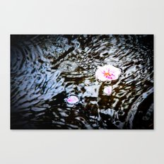 Cherry Blossoms on the Water Canvas Print