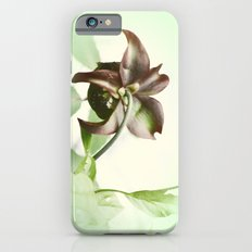 Dainty iPhone 6 Slim Case