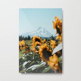 Mt. Hood Sunflower Field Metal Print