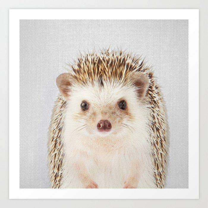 Hedgehog - Colorful Art Print