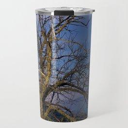 Centenary Chestnut at blue hour Travel Mug