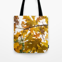 Golden oak leaves Tote Bag