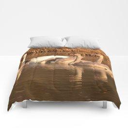 Trumpeter Swan Family Comforters