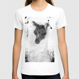 KANZIN T-shirt