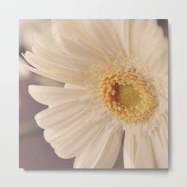 Dreamy White Germini 2 Metal Print