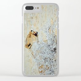 NAMIBIA ... The Lioness I Clear iPhone Case