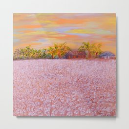 Cotton at Sunset Metal Print